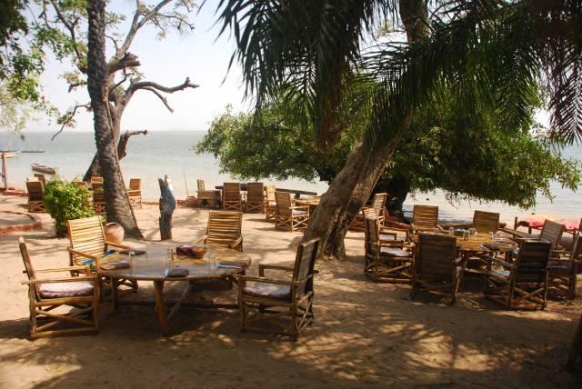 Photo 1 du Le restaurant, le bar de l'Ecolodge de Simal