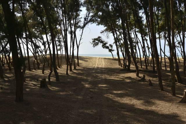 Photo 13 du Les activités à l'Ecolodge de Lompoul, Désert de Lompoul au Sénégal