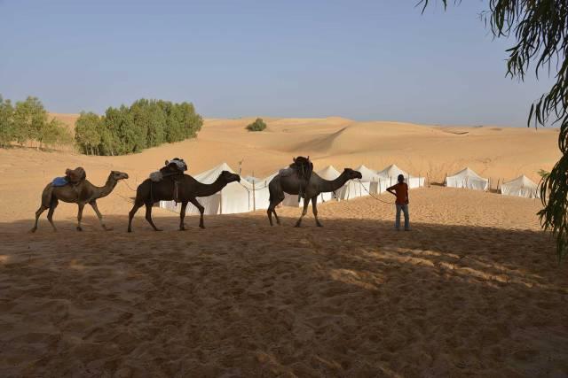 Photo 2 du Ecolodge de Lompoul au Sénégal. Vacances dans un lodge en plein désert au nord du Sénégal.